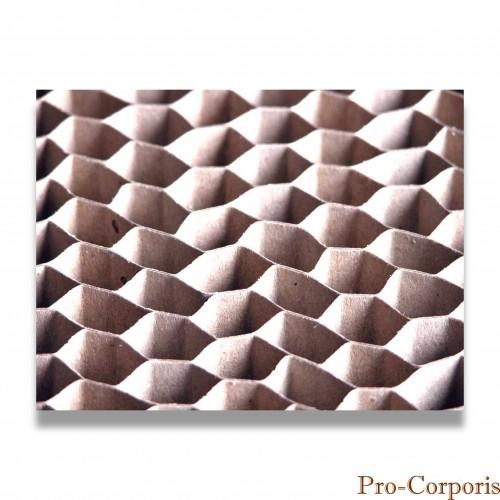 Tanato: supporto alveolare cellulosa cm 200 x 60 x 2 biodegradabile