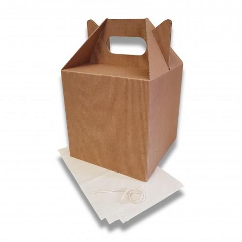 Ceneri urna cellulosa onda nuda cm 20 x 20 x 20 + 10 h con sacchetto mater-bi biodegradabile